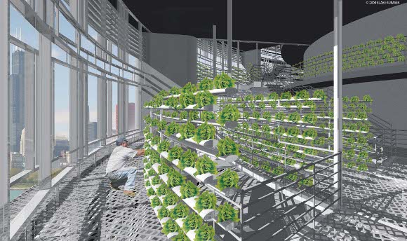 Forrás: The Vertical Farm Project