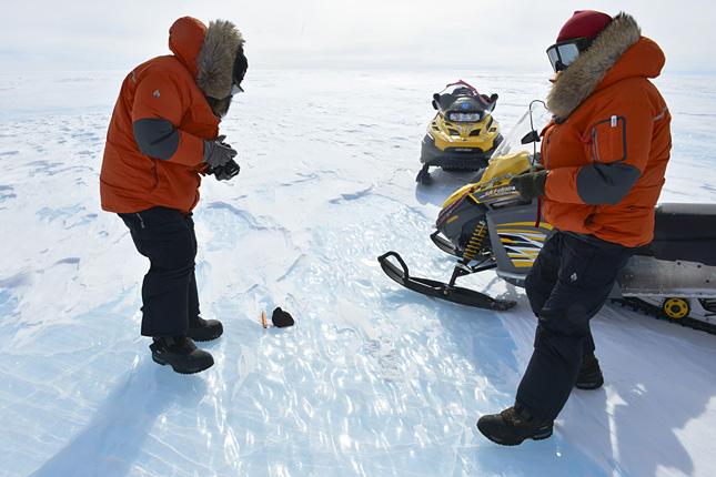 Forrás: International Polar Foundation